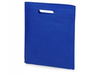 Сумка для выставок Prime, ярко-синий